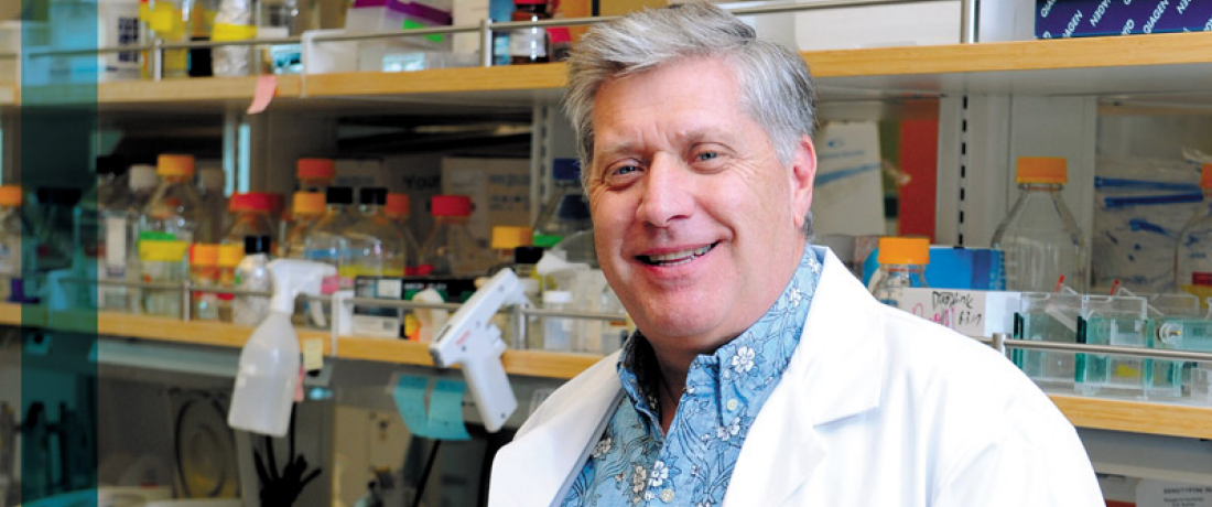 DR. CANCER RESEARCH